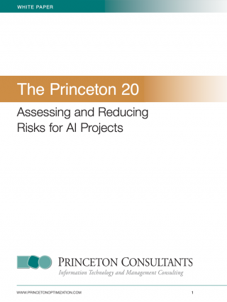 White paper: Assessing and Reducing Risks for AI Projects with The Princeton 20